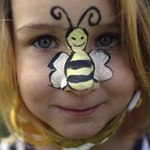 用來殺死蜜蜂的殺蟲劑含有新菸鹼類成分,研究人員認為可能影響人類健康,尤其不利兒童腦部發展。(攝影:Dan Kitwood/Getty Images。)