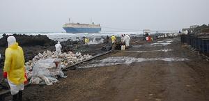 岸際油污清除實況