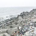 水泥化的海岸(圖片來源:我們的島)