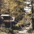 保存大平宿社團/圖片版權歸屬社團法人日本國民信託協會(The Association of National Trusts in Japan)