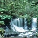 你有多「愛」雨林(照片提供:美國國家大氣研究中心)