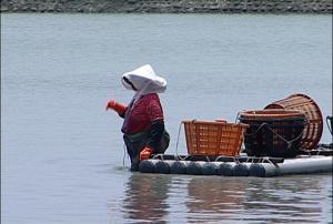 當地面水都提供給工業與民生,沒有提供給抽取地下水的農漁業使用,雲林地層下陷的災難是不可能解決的。(圖片來源:我們的島)