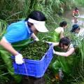 志工的運用以及與民間團體的合作,也是促進國家公園前進的動力。