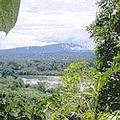 亞馬遜地區有著豐富的生物多樣性。圖片來源:NASA
