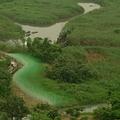 關渡自然公園(圖片提供:關渡自然公園)