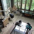 綠建築的第一要件就是在白天室內不能開燈,使用自然的採光