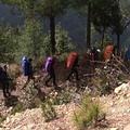 每到假日越來愈多登山客走向山林,投入大自然的懷抱