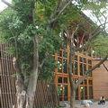 採用自然建材的台北市立圖書館北投分館。