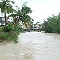美濃幾乎年年淹水;圖片來源:我們的島
