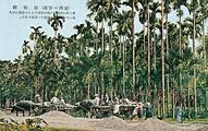 從自用送禮到企業經營的檳榔 (圖片取自書籍介紹網頁)