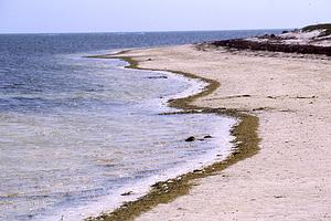 這片沙,是兵家必爭之地