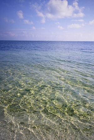 東沙環礁海岸