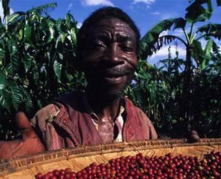 咖啡小農。照片來源:生態綠咖啡