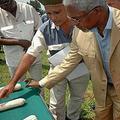 非洲綠色革命聯盟董事長的前聯合國秘書長安南(右)正在檢查玉米的種子。圖片來源:AGRA