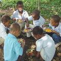 位於多明尼加的學童受到「全球教育糧食發起計畫」的支持。圖片來源:USDA