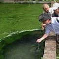 豐沛的水源造就了過去二重埔的豐收。圖片來源:我們的島