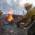加州森林大火。圖片來源:Bryan Dahlberg
