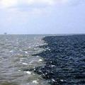 美密西西比河在路易斯安那州和德州海岸線外匯集成死海區。圖片來源:USGS