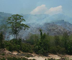 寮國為開發農業而焚燒森林。攝影:Fritz Stugren