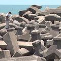 堆積在好美寮海岸的消波塊,無法有效解決海岸侵蝕的問題,卻是海岸景觀及生態的殺手。