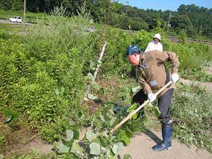 志工們修剪道路及河道沙洲生長過高的雜草。