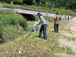 志工們整理飛鳥川兩岸的雜草。