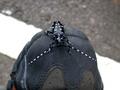 黑底白斑的星天牛,像極了星夜一般。圖片來源:楊家旺