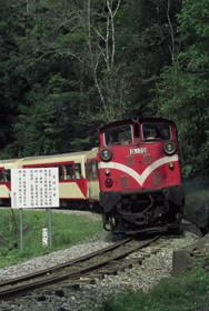 風靡中外的阿里山小火車。圖片提供:中華世界遺產協會