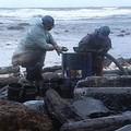 佈滿油污的海岸。圖片提供:我們的島。