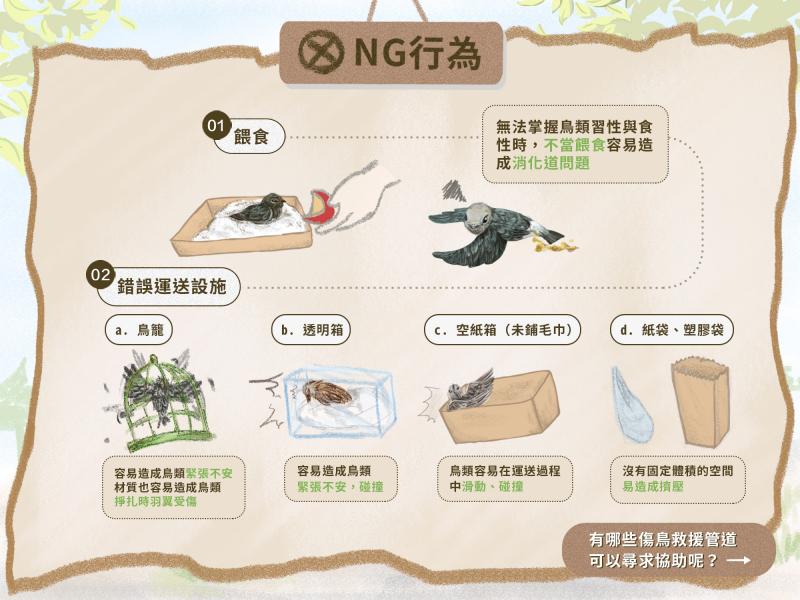 野鳥安置與運送裝置中的NG行為