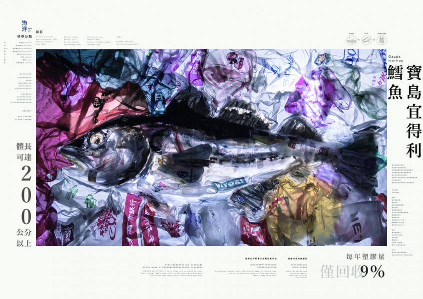 寶島宜得利鱈魚