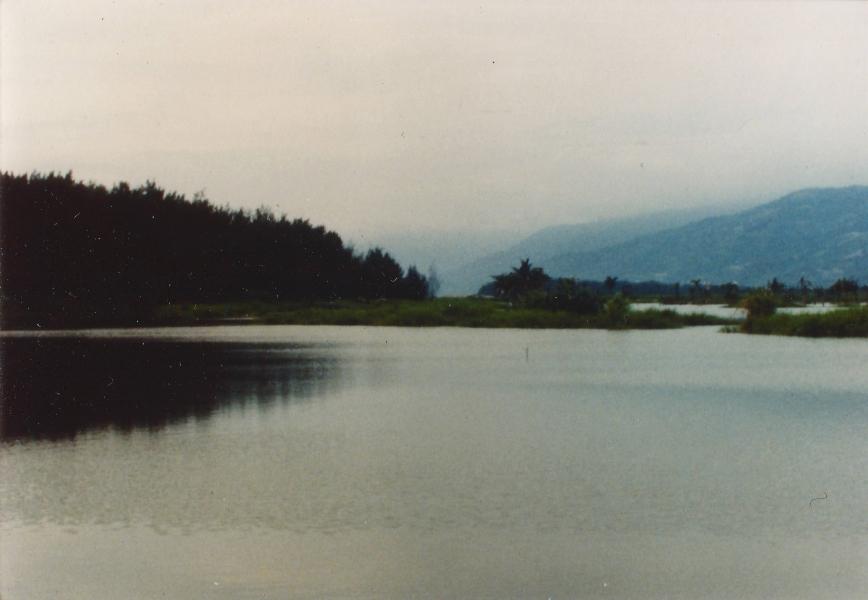 濕地舊貌。攝影:楊宗瑋