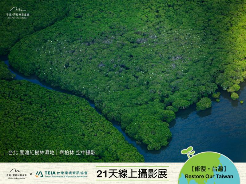 【DAY13|淡水河上的森林】