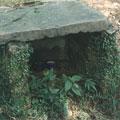 路旁石塊圍成的小廟